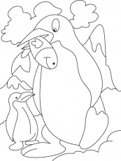 Coloring Penguin Pages | Animal Coloring Pages | Kids Coloring
