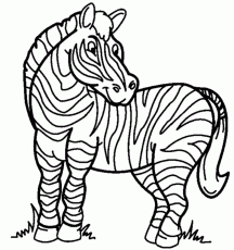 Zebra Coloring Page | Coloring Pages