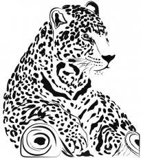 Jaguar by Carla Nichiata - Jaguar Digital Art - Jaguar Fine Art