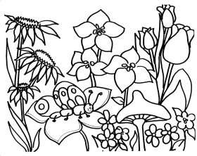 coloring pages of gardens