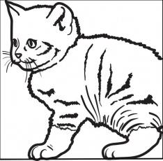Free Cats Coloring Pages for Kids - Printable Coloring Sheets