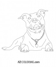 pitbull coloring page - Pitbull Coloring Pages
