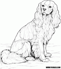 Dog Coloring Pages by YUCKLES!