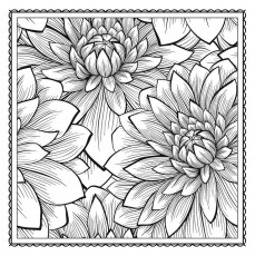 my | Adult Coloring, Adult ...