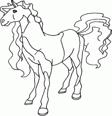 Horseland Coloring Pages Coloringpages1001 Coloring Home