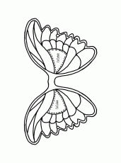 butterfly templates to print