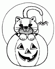 Cat, Spider & Pumpkin of Halloween Coloring Pages – Free Halloween
