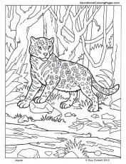 Coloring Page Jaguar Img 2014 | Sticky Pictures