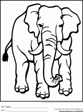 Wild Animal Coloring Pages Jungle Animal Coloring Pages Simple
