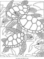 coloring page for creativity
