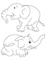 Two baby elephants coloring page | Download Free Two baby