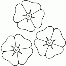 Poppies - Coloring Page (Remembrance Day)