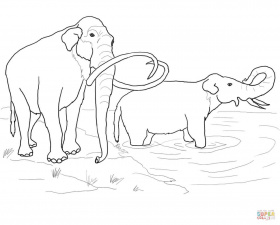 Columbian Mammoth coloring page | Free Printable Coloring Pages