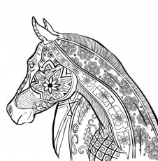 coloring-pages-for-adults-zentangle-4.jpg