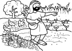 Seed that Falling into Good Soil in Parable of the Sower Coloring ...
