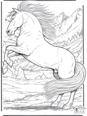 1000+ ideas about Horse Coloring Pages | Colouring ...