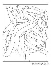 SOYBEANS Colouring Pages