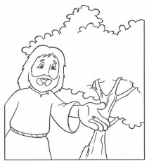 Mustard Seed Coloring Page (With images) | Coloring pages ...