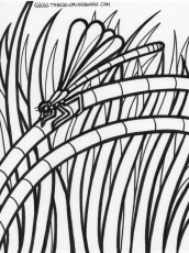 Rainforest Animals Coloring Pages Rainforest Coloring Page 124003
