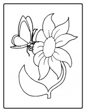 coloring pics of flowers