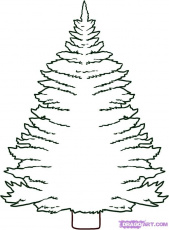How to Draw a Pine Tree, Step by Step, Trees, Pop Culture, FREE