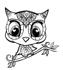 baby owls Colouring Pages (page 2)