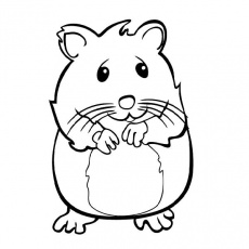 hamster coloring pages fagi visualdnsnet