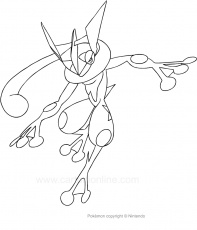 Drawing Greninja of the Pokemon coloring page