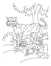 Cub with cheetah coloring pages | Download Free Cub with cheetah