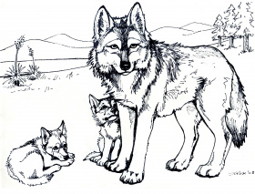 Free Color Pages For Adults Coloring Pages - VoteForVerde.com