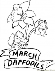 03 March Daffodils Coloring Page - Free Flowers Coloring Pages ...