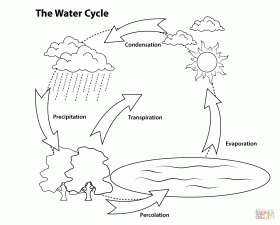 Simple Water Cycle coloring page | Free Printable Coloring Pages