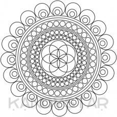 Mandala Coloring Page Seed Printable Instant | Etsy