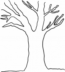 Best Photos of Trees Without Leaves Coloring Pages - Tree without ...