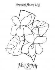 50 State Flowers — Free Coloring Pages – american flowers week