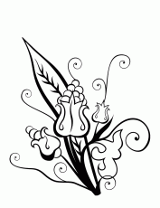 Hawaiian Flower Coloring Page - ClipArt Best