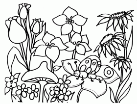 springtime pictures  coloring pages for adults to print