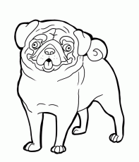 pug dog coloring pages