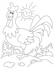Funny rooster farm animal coloring pages | Download Free Funny