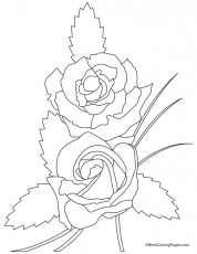 Valentine rose coloring page | Download Free Valentine rose