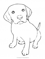 puppy coloring pages 02 Find creative coloring pages at ...