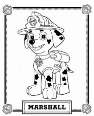 Paws Coloring Pages