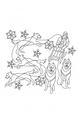 The Dog Sled Coloring Page - Free Coloring Pages Online