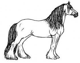 big-horse-easy-coloring-pages-432437 Â« Coloring Pages for Free 2015