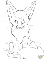 Fennec fox coloring pages | Free Coloring Pages