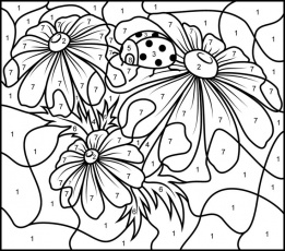 Coloring By Number Pages For Adults