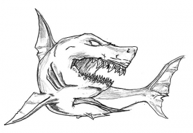 Shark Jaws Sketch Coloring Pages : Best Place to Color | Shark coloring  pages, Shark drawing, Shark art