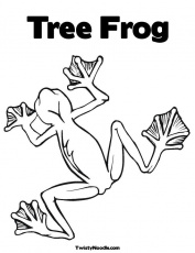 Tree Frog Outline