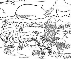 animal habitats coloring pages