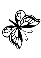 BUTTERFLY coloring pages - Printable butterfly